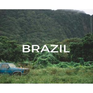 Plant a tree in Brazil and help save the world