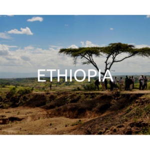 Plant a tree in Ethiopia