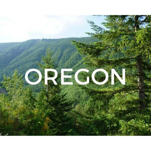 Help us plant trees in Oregon
