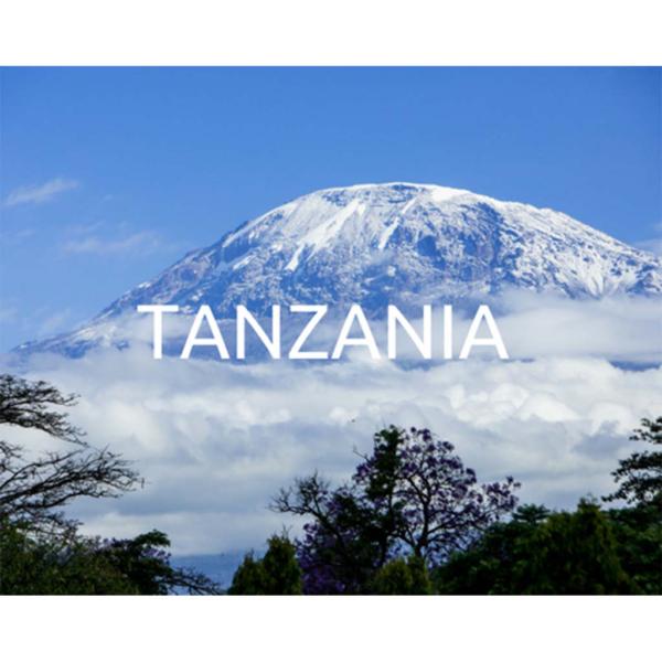 Plant a tree in Tanzania