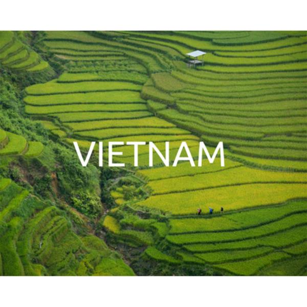 Plant a tree in Vietnam