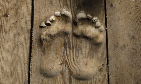 What is a carbon footprint carbon toe-prints